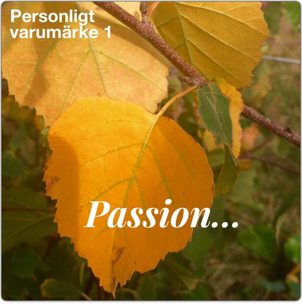 del1-passion