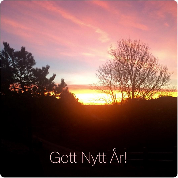 gottnyttar2015